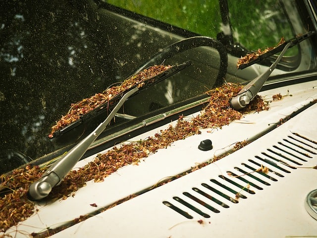 Sommerscheibenreiniger: Diese Reiniger meistern die Herausforderungen